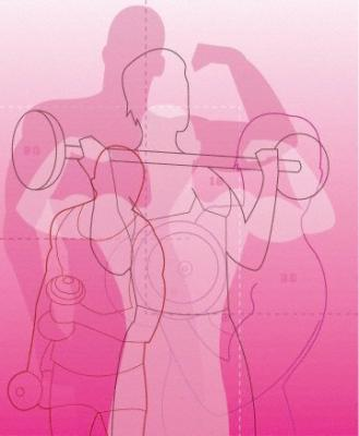 Diseñar un programa anual de musculación
