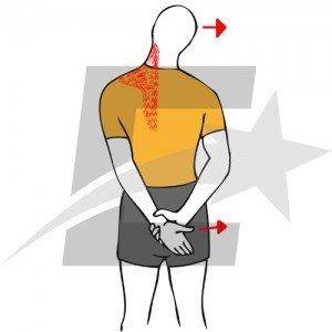 Rutina básica para hombros. Musculación y culturismo.